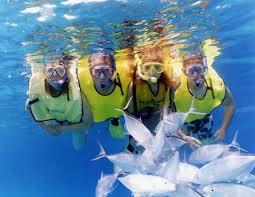 andaman island snorkeling